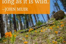 Nature Quotes / Inspiring quotes about nature
