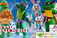 Nijia turtles