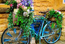 Bike Baskets flora