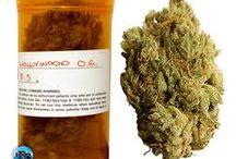 Salinas medical marijuana, marina medical marijuana / Get your Salinas medical marijuana, marina medical marijuana delivered at your doorstep, we have a wide variety of edible to choose from cannafreedom.org