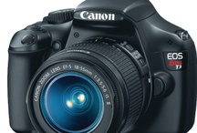 Easy To Use Digital Cameras