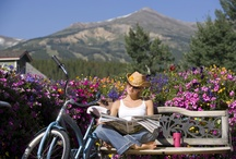 Town of Breckenridge / What makes us the best resort in Colorado isn't necessarily our skiing and snowboarding (although that's pretty good too) it's our 151 year old town and the shops, restaurants, and characters that make it up.