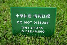 "Malas traducciones de chino. Funny ""Chinglish"" mistranslations"
