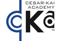 Martial Arts Classes For Kids & Adults / Martial arts classes in Cranford, NJ at Cesar-Kai Academy for kids and adults teach you valuable skills in self-defense, karate, kickboxing, grappling, and character development!