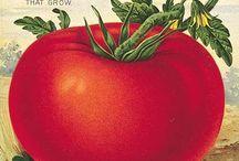 Фрукты,овощи,ягоды