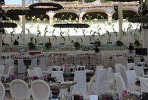 Bodas / Bodas realizadas en la Plaza de Toros San Miguel de Allende