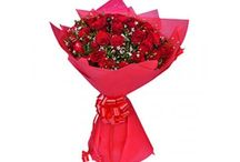 Send Flowers To Delhi / Send Flowers to Delhi, Flowers Delivery in Delhi, Florist in Delhi, Flowers home delivery, Flower delivery http://flowershop18.in/flowers-to-delhi.aspx