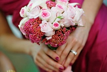 Bridesmaids & Guests