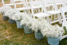 Wedding ideas for S&J 2014! / by Alex Davis