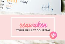 bullet journal, planner