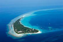 Maldives - kuramathi island / Vacation Dreams