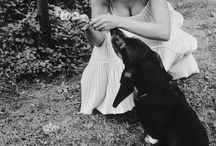 mm with dogs
