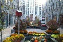New York 2 / Fotos propias de nuestro viaje a New York en Noviembre de 2015