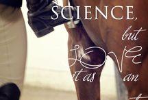 life as a horsegirl
