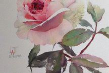 Rosa en acuarela