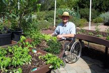 Accessible Gardening