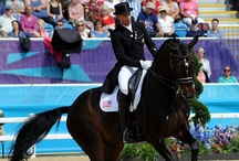 Dressage / All the elegance, grace and beauty of dressage