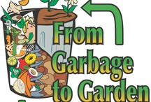 Composting / by Cheryl Tanner