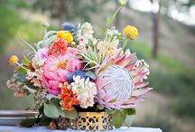 Wedding Flowers and Floral Alternatives / As a former wedding planner, I had a LOT of pins of flowers and alternative centerpieces and bouquets.  I didn't need all of them, but I love them so.  Here's a curated collection of my favorites!