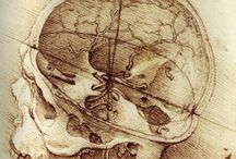 Medical Science and Art / by Ruth Brusuelas
