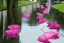 Umbies and rainy days