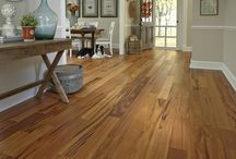 Spring Flooring Trends 2015 / by Barbara Ryan