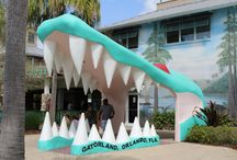 Florida Family Attractions