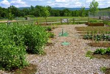 Organic Gardening / Composting - Backyard gardening - Nontoxic Pest Control - Raised Bed Gardening