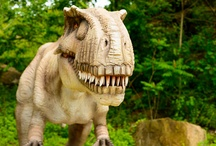 Found in New Jersey / The Garden State was home to the discovery of two dinosaurs, the Hadrosaurus, which was made the state dinosaur in 1991, and the Dryptosaurus.