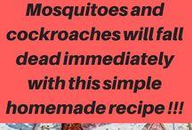kakkerlakke en muskiete sap