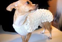 Chihuahua clothing... all designed and hand made by me / Chihuahua clothing. Sweaters, coats and more for our pets ...  ...All designed and hand made by me  with high quality yarn (preferably made in Italy), love and joy...
