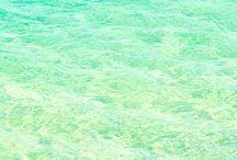 •Sea•