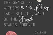 Bible verses and wisdom♥