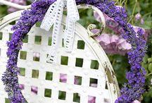Örter, lavendel och blommor