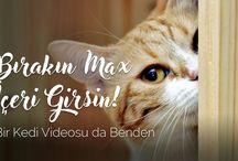 YouTube Vidolarım