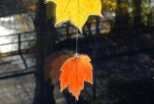 Høst / Aktiviteter til høsten i barnehagen