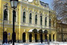 hódmezővásárhely Hungary