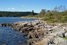 Maine Coast Heritage Trust / Maine Coast Heritage Trust conserves and stewards Maine's coastal lands and islands for their renowned scenic beauty, outdoor recreational opportunities, ecological diversity and working landscapes.