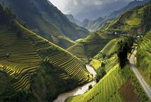 Attractions: Vietnam