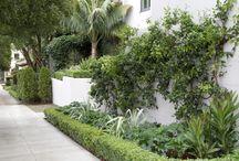Sidewalk-Garden