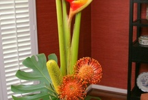 Vazby a dekorace z živých květin