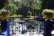 Gardening: Pond / by Wayfaring Stranger