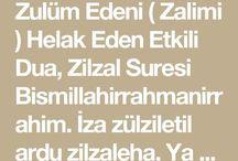 zulum