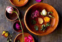 plants & flowers / by TrendDaily caroline davis