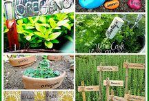 Etiquettes de jardin / Nommer les plantes de façon jolie ou amusante