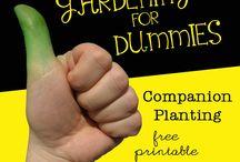 puutarhavinkkejä