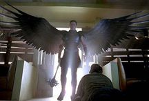 ● Angel
