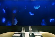 ADn waterscapes | Saltwater aquariums / Custom saltwater and freshwater aquariums