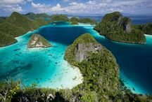 Cruising Indonesia / The 17.500 islands and atolls of the Indonesian archipelago stretches almost 5.000 km from west to east and more than 2.000 km and its six seas. The best way and often the only one for exploring Indonesia is on a liveaboard cruise, several places are difficult to reach and there are plenty of pioneering diving opportunities. Definitely not to be missed! Are you ready to Cruising Indonesia?