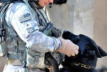 Furry Friends / Soldiers with animals.  / by U.S. Army
